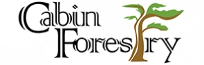 Cabinforestry-set-logo